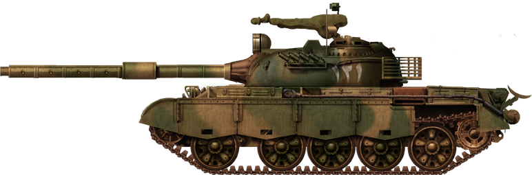 Pakistani Type 79