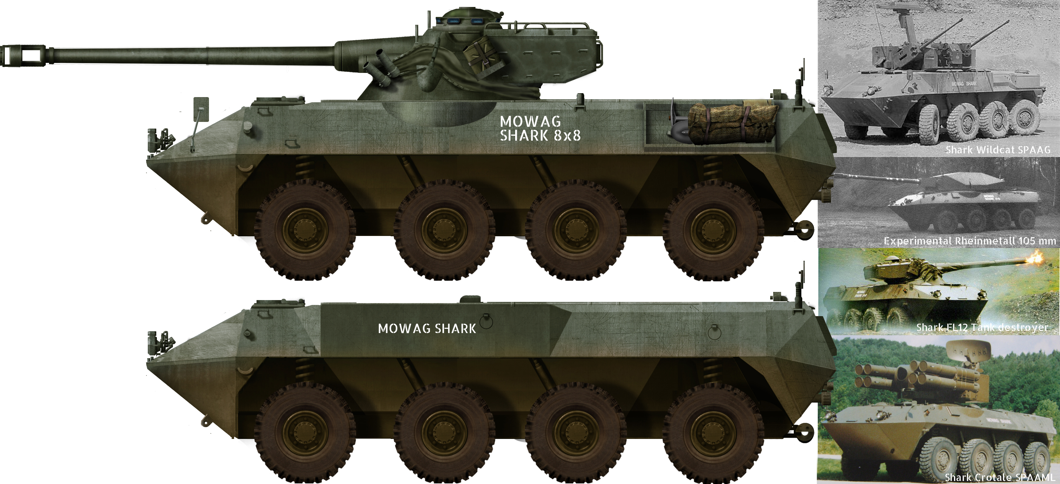 Tanks and AFVs of Switzerland