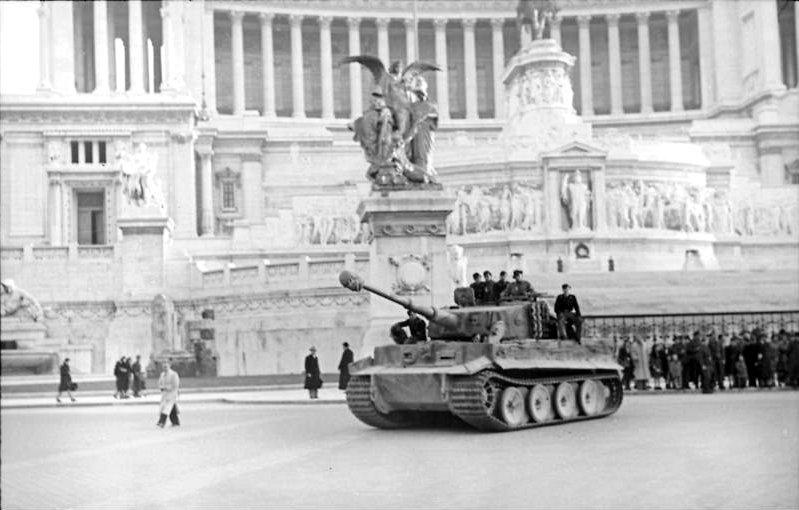 Tiger in Rome