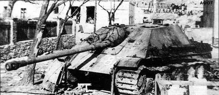 Burned-out Jagdpanther near Lake Balaton