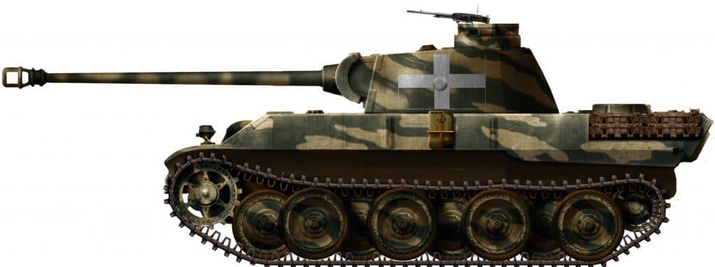 Italian Panther
